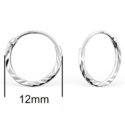 Sterling Silver 12mm Sleeper Earrings